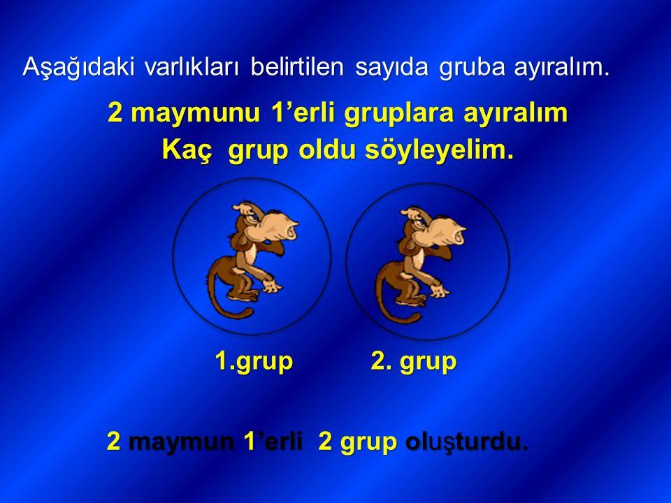 Aşağıdaki varlıkları belirtilen sayıda gruba ayıralım. 2 maymunu 1'erli gruplara ayıralım Kaç grup oldu söyleyelim. 1.grup 2. grup 2 maymun 1'erli 2 g