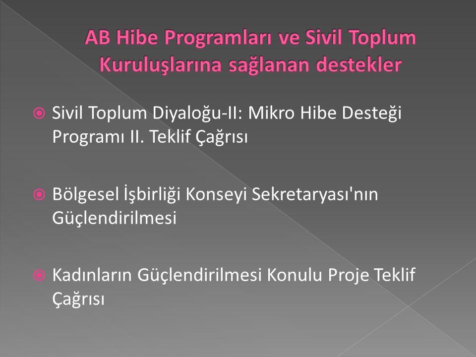  Sivil Toplum Diyaloğu-II: Mikro Hibe Desteği Programı II.