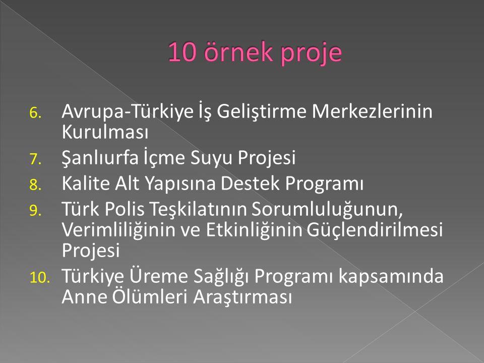 6. Avrupa-Türkiye İş Geliştirme Merkezlerinin Kurulması 7.