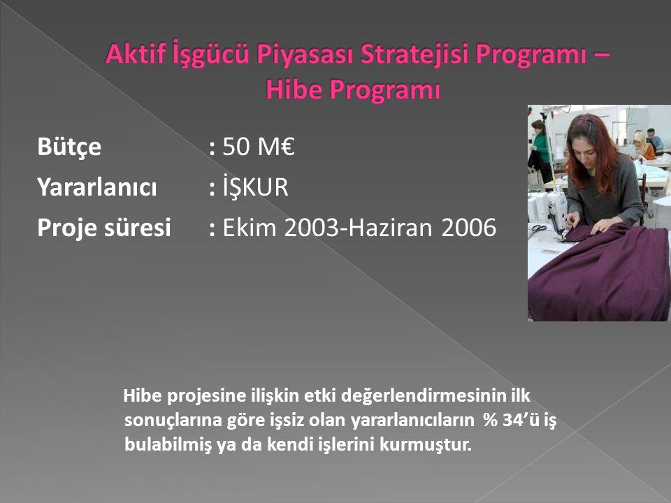 Bütçe : 50 M€ Yararlanıcı : İŞKUR Proje süresi: Ekim 2003-Haziran 2006 Hibe projesine ilişkin etki değerlendirmesinin ilk sonuçlarına göre işsiz olan yararlanıcıların % 34'ü iş bulabilmiş ya da kendi işlerini kurmuştur.
