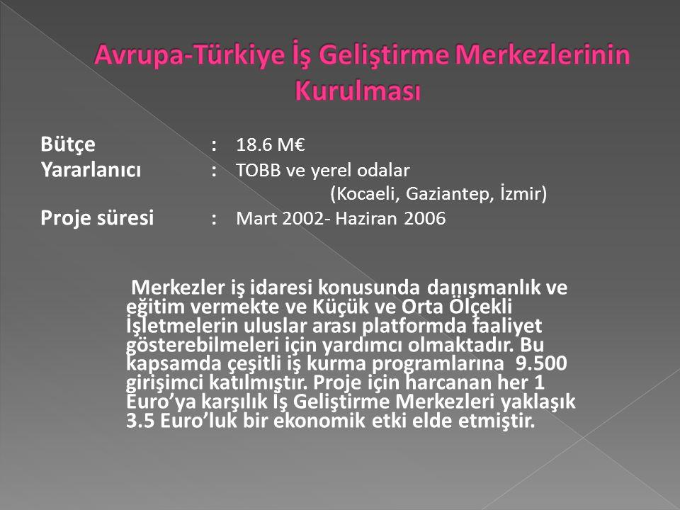 Bütçe : 18.6 M€ Yararlanıcı : TOBB ve yerel odalar (Kocaeli, Gaziantep, İzmir) Proje süresi : Mart 2002- Haziran 2006 Merkezler iş idaresi konusunda danışmanlık ve eğitim vermekte ve Küçük ve Orta Ölçekli İşletmelerin uluslar arası platformda faaliyet gösterebilmeleri için yardımcı olmaktadır.
