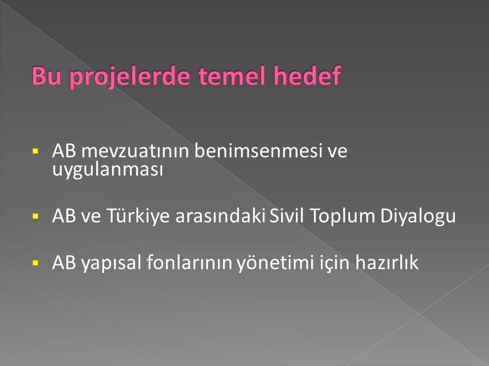  AB mevzuatının benimsenmesi ve uygulanması  AB ve Türkiye arasındaki Sivil Toplum Diyalogu  AB yapısal fonlarının yönetimi için hazırlık