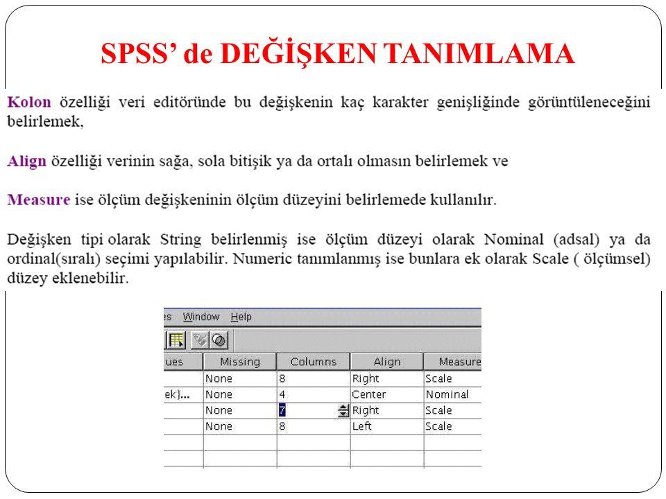 SPSS' de DEĞİŞKEN TANIMLAMA