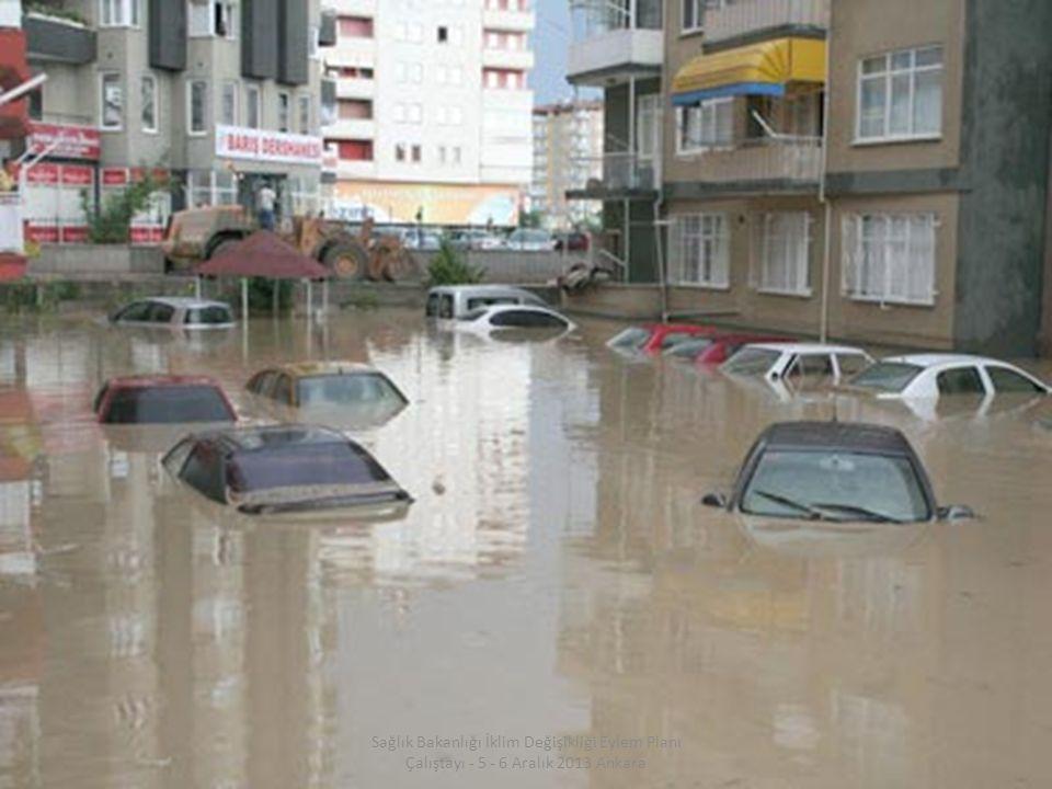 15 / 31 Sağlık Bakanlığı İklim Değişikliği Eylem Planı Çalıştayı - 5 - 6 Aralık 2013 Ankara