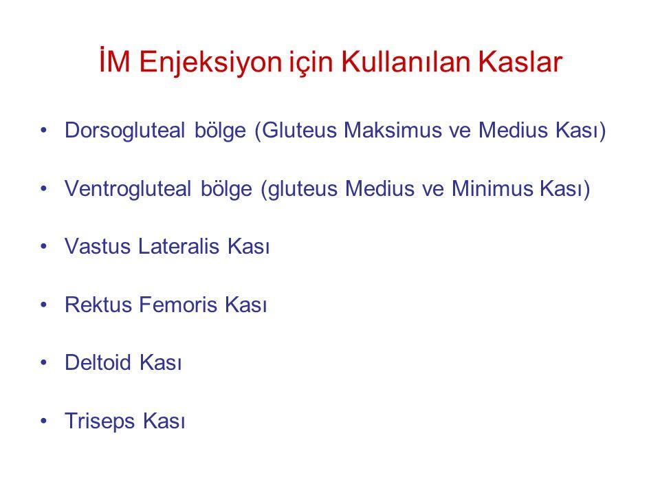 İM Enjeksiyon için Kullanılan Kaslar Dorsogluteal bölge (Gluteus Maksimus ve Medius Kası) Ventrogluteal bölge (gluteus Medius ve Minimus Kası) Vastus