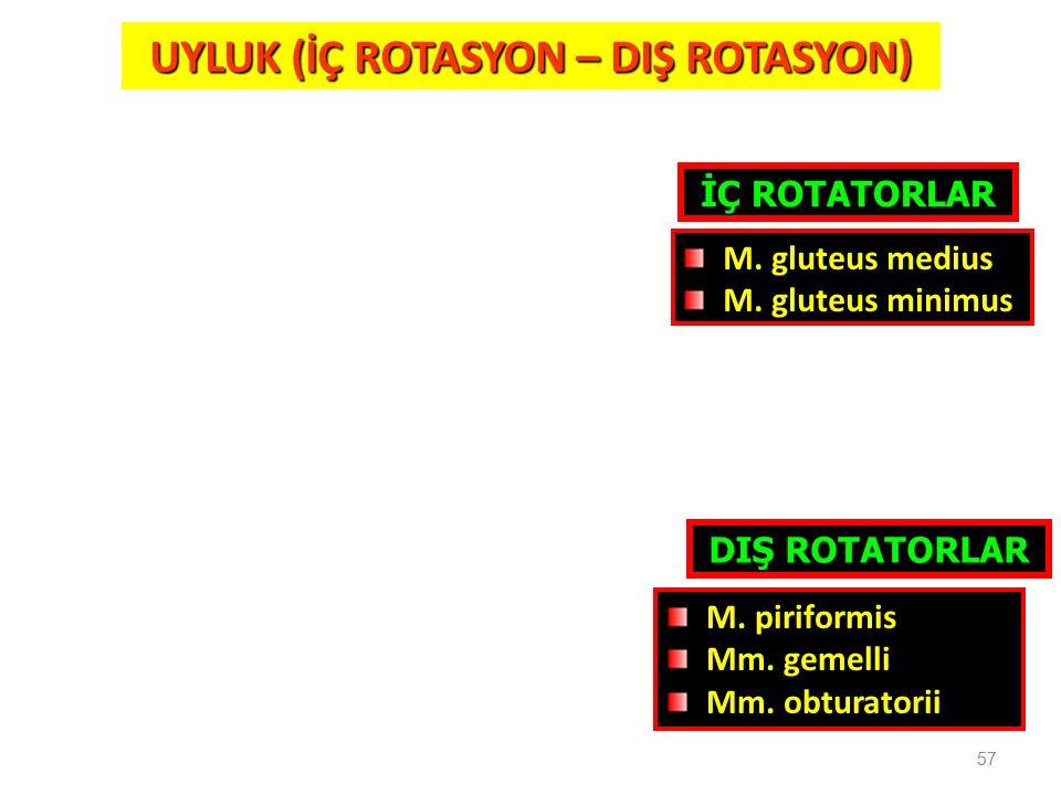 57 UYLUK (İÇ ROTASYON – DIŞ ROTASYON) İÇ ROTATORLAR DIŞ ROTATORLAR M. piriformis Mm. gemelli Mm. obturatorii M. gluteus medius M. gluteus minimus