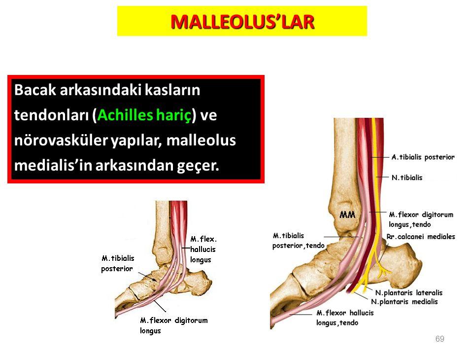 MALLEOLUS'LAR 69 Bacak arkasındaki kasların tendonları (Achilles hariç) ve nörovasküler yapılar, malleolus medialis'in arkasından geçer.