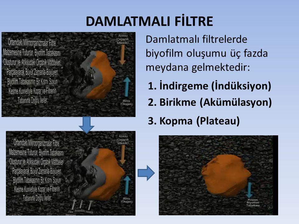 DAMLATMALI FİLTRE Damlatmalı filtrelerde biyofilm oluşumu üç fazda meydana gelmektedir: 1. İndirgeme (İndüksiyon) 2. Birikme (Akümülasyon) 3. Kopma (