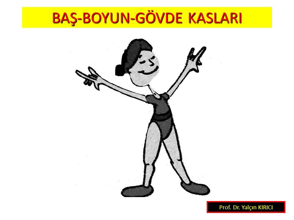 17 Prof. Dr. Yalçın KIRICI BAŞ-BOYUN-GÖVDE KASLARI