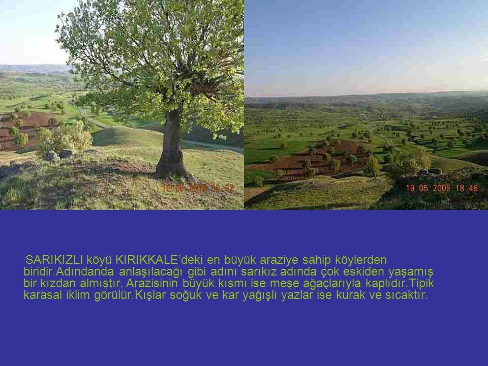 Sulakyurt adındanda anlaşılacağı gibi sarıkızlı köyü çok verimli ve sulak bir araziye sahiptir.Köylü yaşamını tarım ve hayvancılıkla sağlamaktadır.Ayrıca arıcılık yapanlarda mevcuttur.