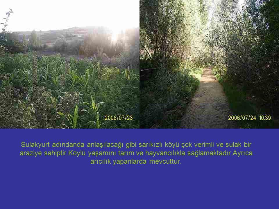 Sulakyurt adındanda anlaşılacağı gibi sarıkızlı köyü çok verimli ve sulak bir araziye sahiptir.Köylü yaşamını tarım ve hayvancılıkla sağlamaktadır.Ayr