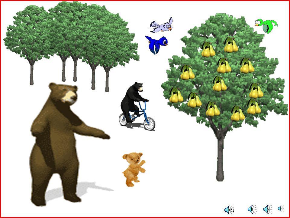 Hey çocuklar, Şu iri yapılı hayvanı tanıyor musunuz? Aferin size. Evet o bir ayı. Peki ayı demişken Bir de ''ayı'' adlı şarkı dinleyelim mi? Ben bu şa