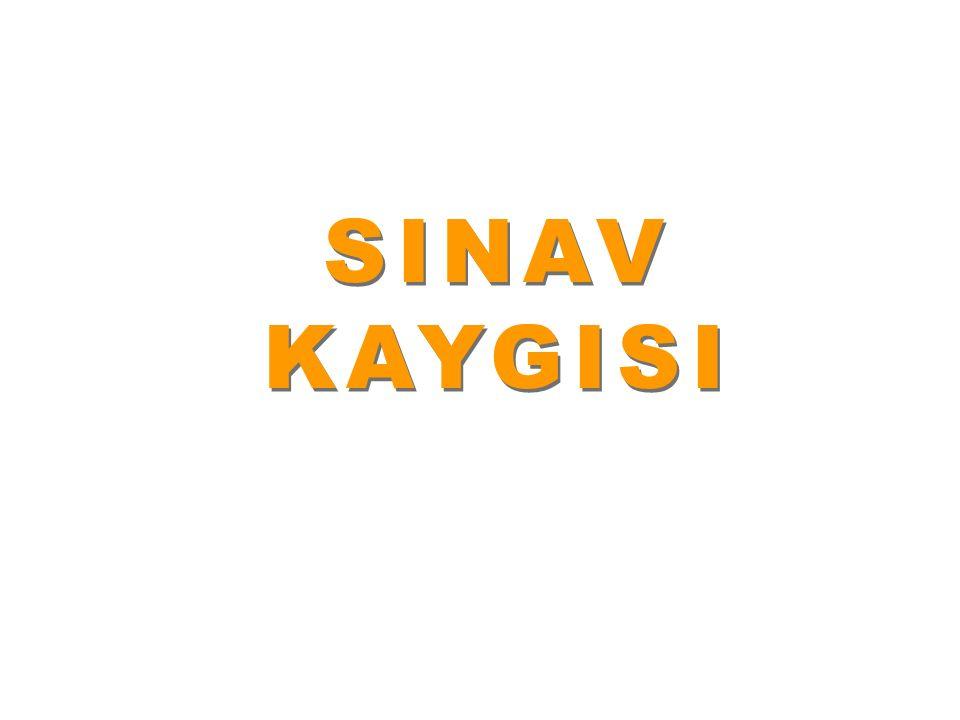 SINAVKAYGISI