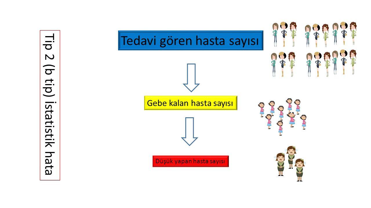 Tedavi gören hasta sayısı Gebe kalan hasta sayısı Düşük yapan hasta sayısı Tip 2 (b tip) İstatistik hata