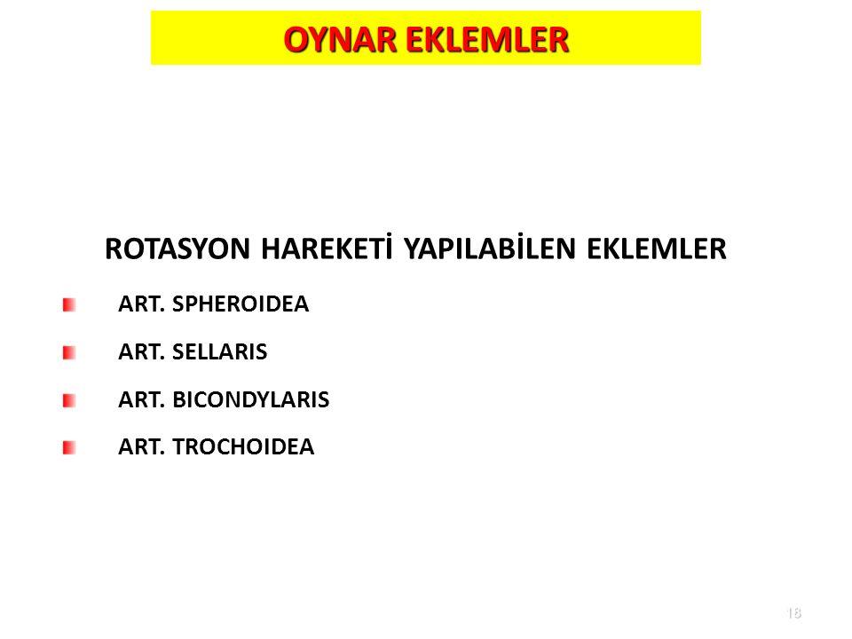 18 OYNAR EKLEMLER ROTASYON HAREKETİ YAPILABİLEN EKLEMLER ART. SPHEROIDEA ART. SELLARIS ART. BICONDYLARIS ART. TROCHOIDEA