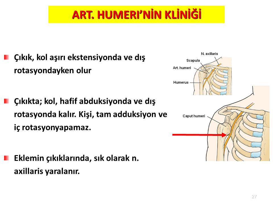 27 Çıkık, kol aşırı ekstensiyonda ve dış rotasyondayken olur Çıkıkta; kol, hafif abduksiyonda ve dış rotasyonda kalır. Kişi, tam adduksiyon ve iç rota