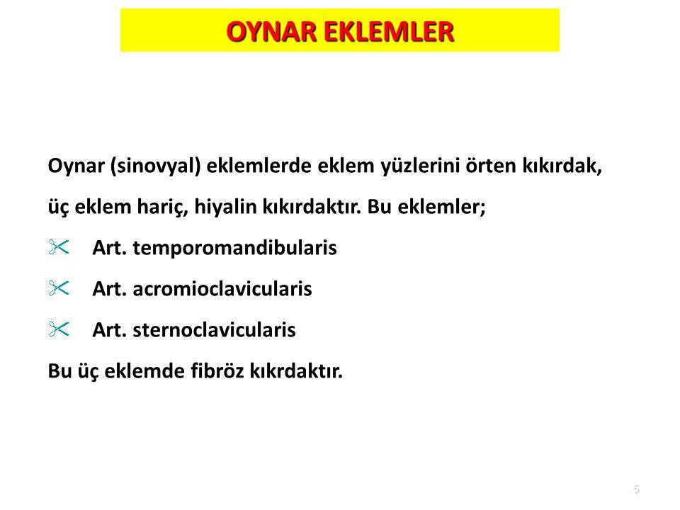5 OYNAR EKLEMLER Oynar (sinovyal) eklemlerde eklem yüzlerini örten kıkırdak, üç eklem hariç, hiyalin kıkırdaktır. Bu eklemler;  Art. temporomandibula
