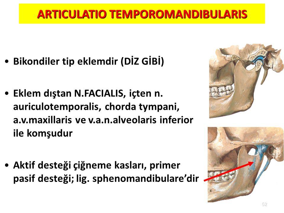 52 ARTICULATIO TEMPOROMANDIBULARIS Bikondiler tip eklemdir (DİZ GİBİ) Eklem dıştan N.FACIALIS, içten n. auriculotemporalis, chorda tympani, a.v.maxill