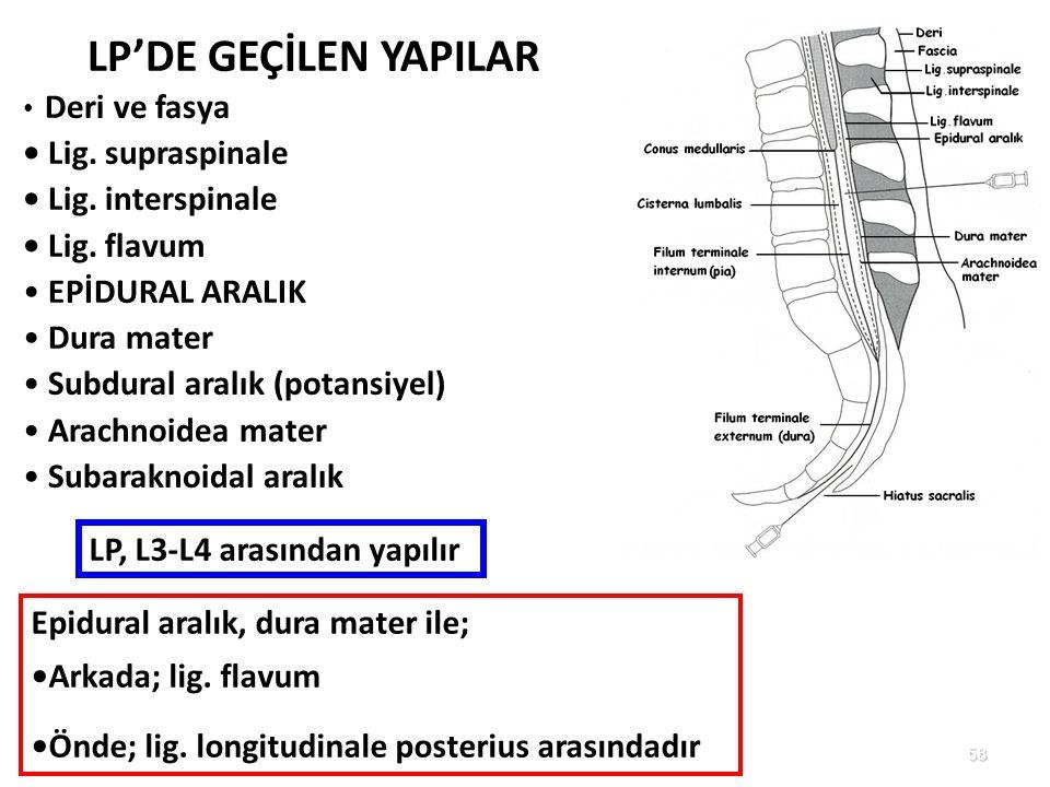 58 LP'DE GEÇİLEN YAPILAR Deri ve fasya Lig. supraspinale Lig. interspinale Lig. flavum EPİDURAL ARALIK Dura mater Subdural aralık (potansiyel) Arachno