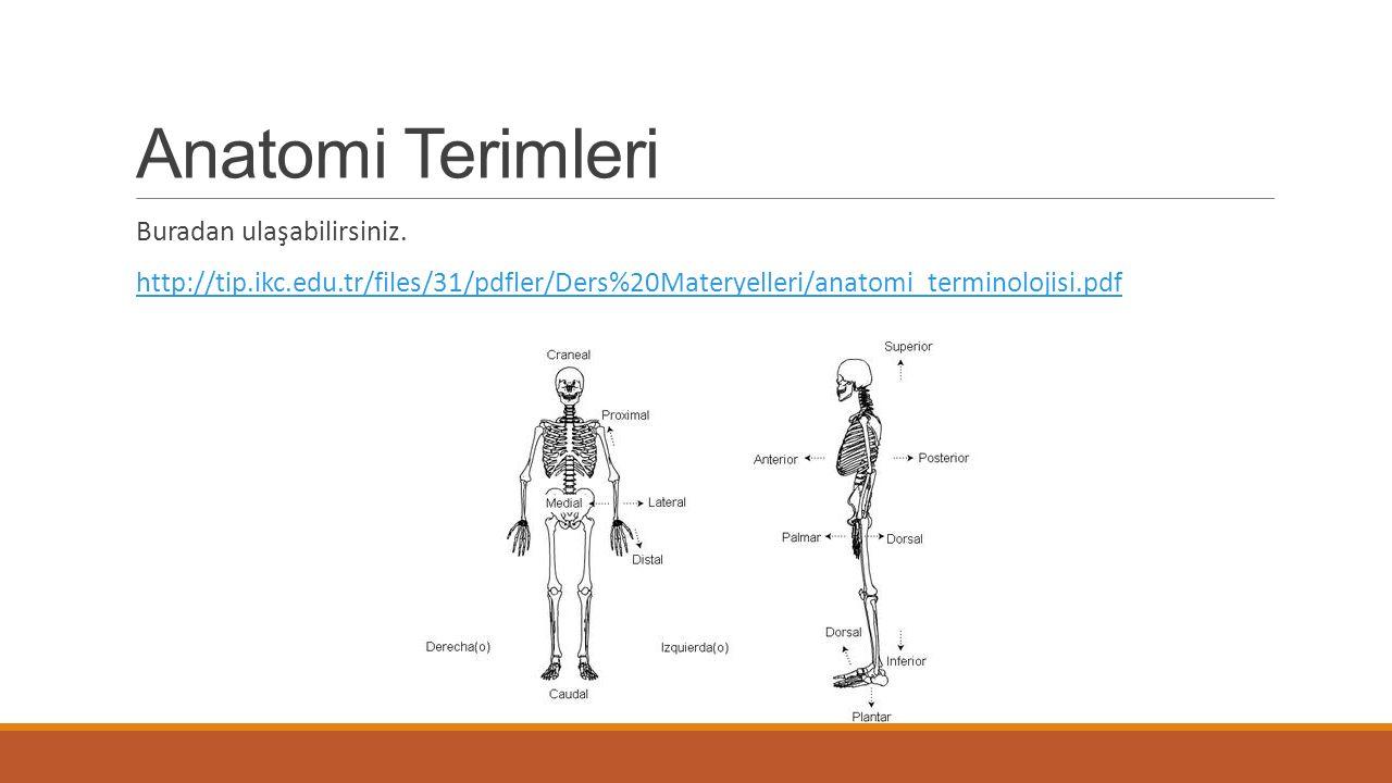 Anatomi Terimleri Buradan ulaşabilirsiniz. http://tip.ikc.edu.tr/files/31/pdfler/Ders%20Materyelleri/anatomi_terminolojisi.pdf