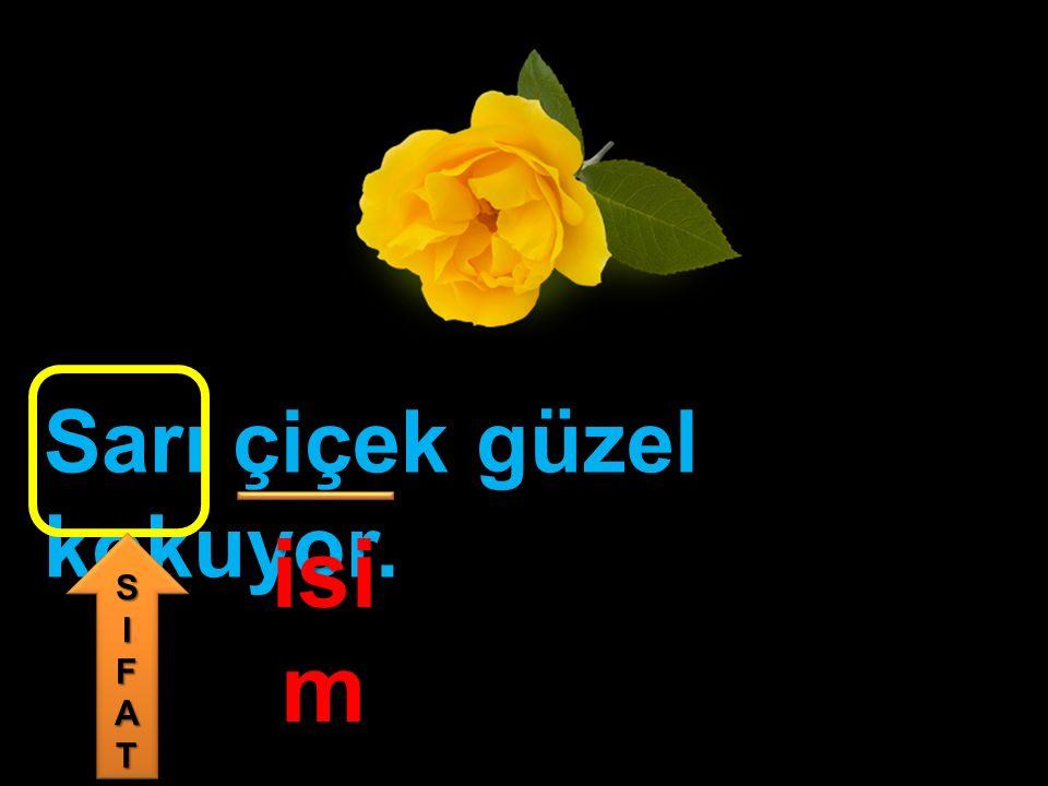 Sarı çiçek güzel kokuyor. isi m SIFATSIFAT