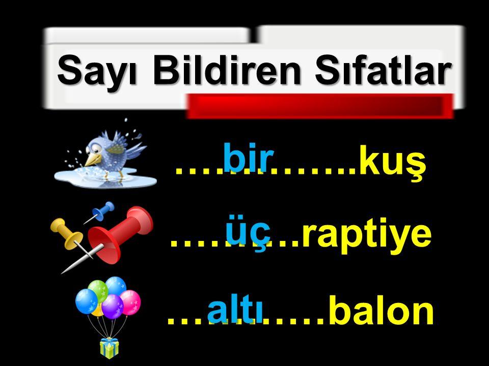 Sayı Bildiren Sıfatlar …………..kuş ……….raptiye …………balon bir üç altı altı