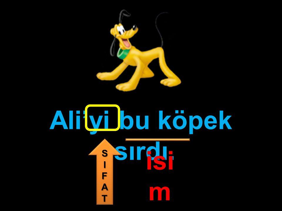Ali'yi bu köpek ısırdı. isi m SIFATSIFAT