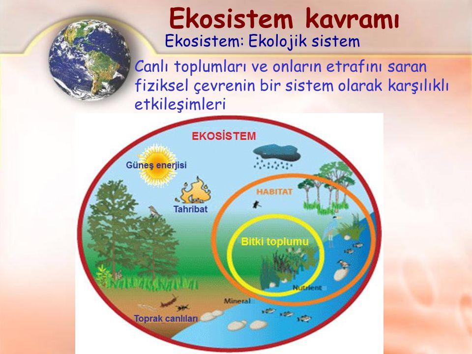 Canlı toplumları ve onların etrafını saran fiziksel çevrenin bir sistem olarak karşılıklı etkileşimleri Ekosistem: Ekolojik sistem Ekosistem kavramı