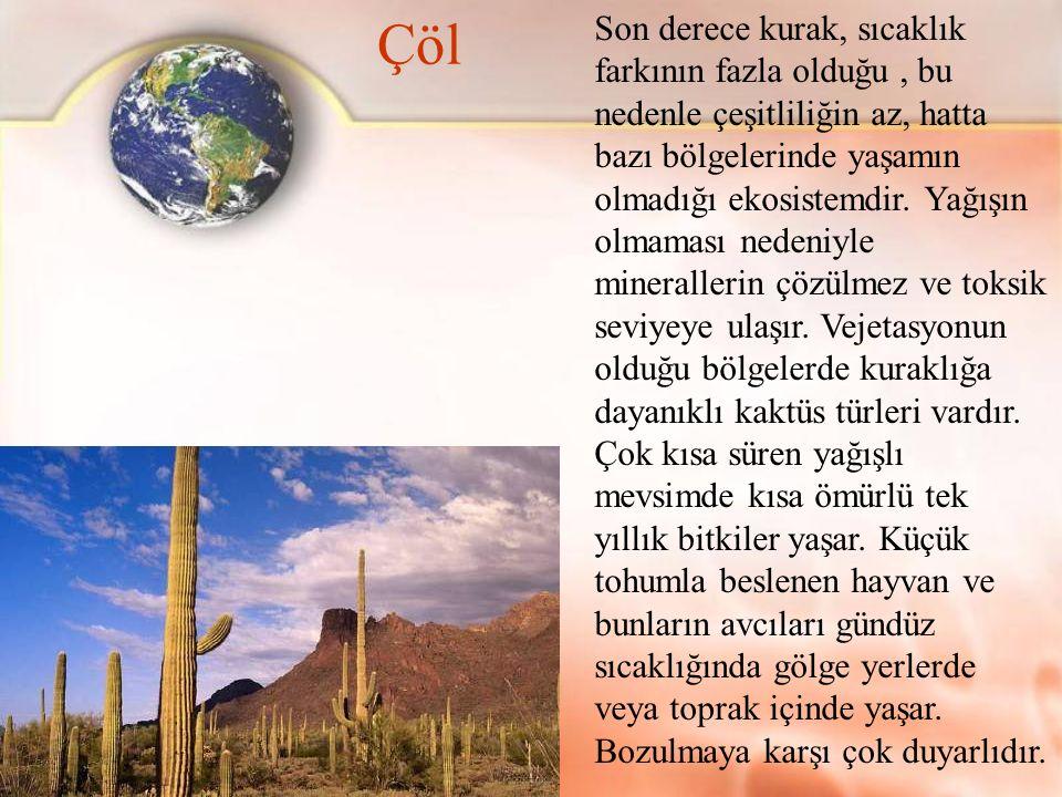 Çöl Son derece kurak, sıcaklık farkının fazla olduğu, bu nedenle çeşitliliğin az, hatta bazı bölgelerinde yaşamın olmadığı ekosistemdir. Yağışın olmam