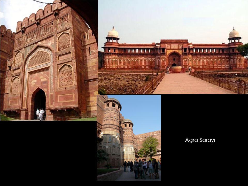 Agra Sarayı