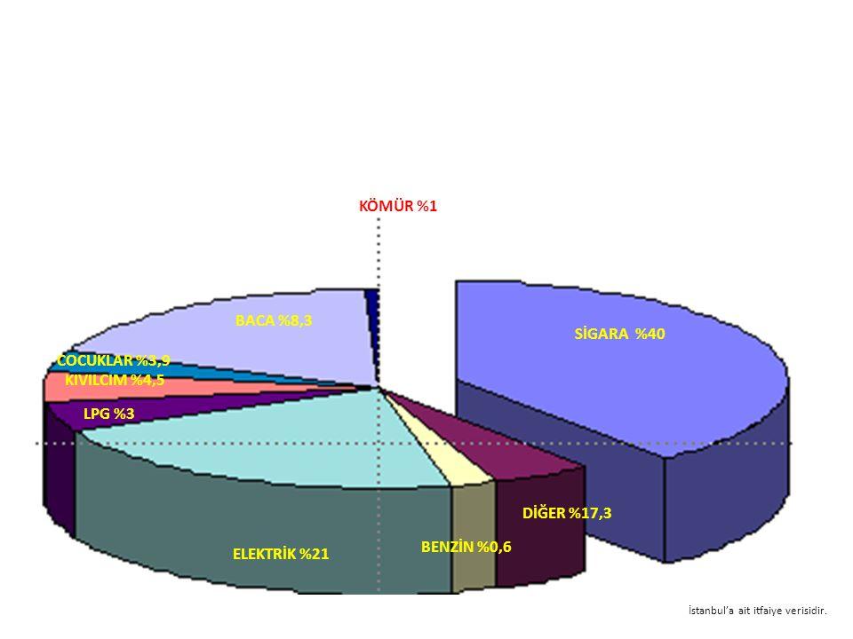 ELEKTRİK %21 DİĞER %17,3 BENZİN %0,6 SİGARA %40 KÖMÜR %1 BACA %8,3 LPG %3 COCUKLAR %3,9 KIVILCIM %4,5 İstanbul'a ait itfaiye verisidir.