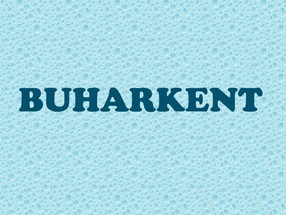 16 BUHARKENT