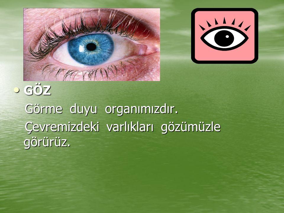 GÖZ GÖZ Görme duyu organımızdır. Görme duyu organımızdır. Çevremizdeki varlıkları gözümüzle görürüz. Çevremizdeki varlıkları gözümüzle görürüz.