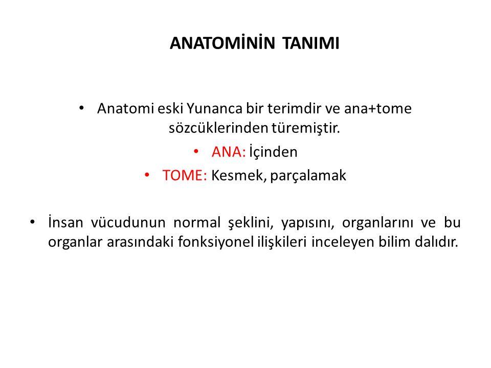 ANATOMİNİN TANIMI Anatomi eski Yunanca bir terimdir ve ana+tome sözcüklerinden türemiştir. ANA: İçinden TOME: Kesmek, parçalamak İnsan vücudunun norma