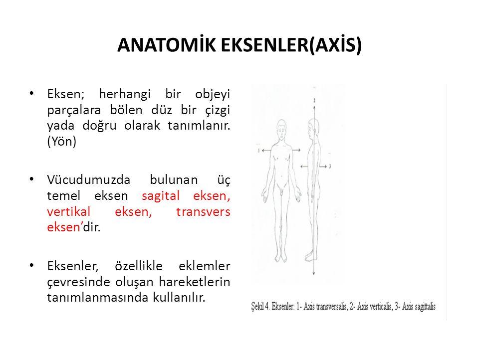 ANATOMİK EKSENLER(AXİS) Eksen; herhangi bir objeyi parçalara bölen düz bir çizgi yada doğru olarak tanımlanır. (Yön) Vücudumuzda bulunan üç temel ekse
