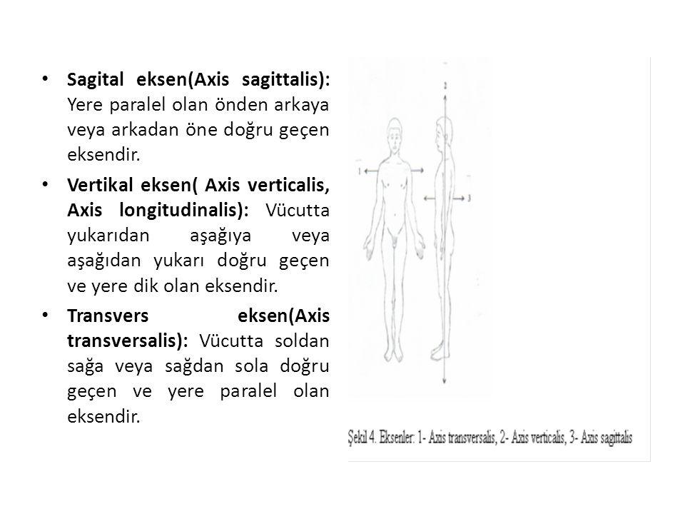 Sagital eksen(Axis sagittalis): Yere paralel olan önden arkaya veya arkadan öne doğru geçen eksendir. Vertikal eksen( Axis verticalis, Axis longitudin