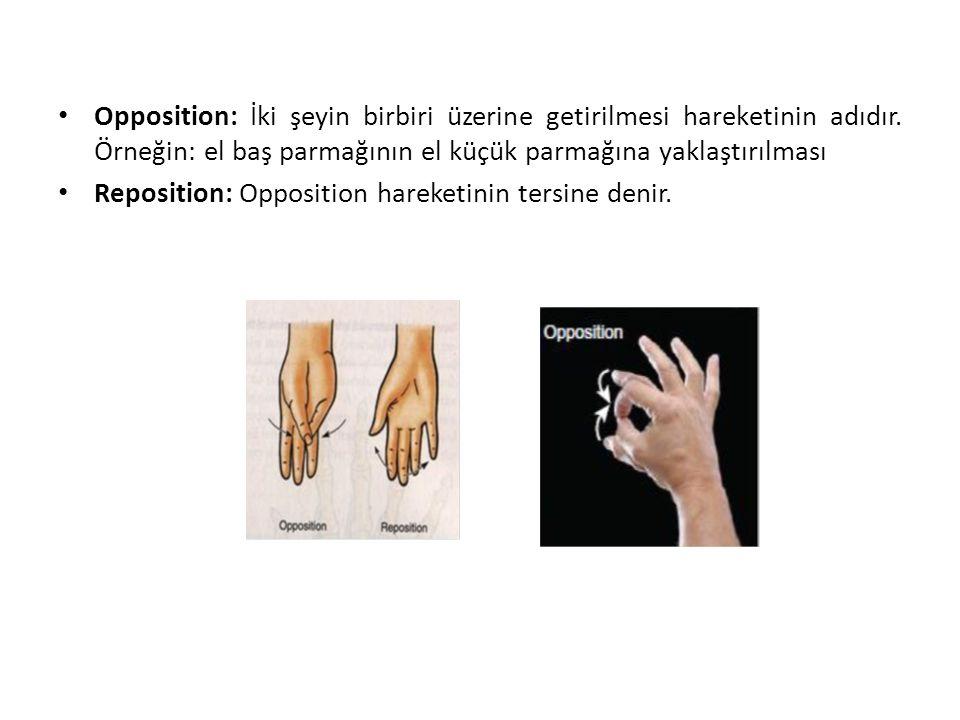 Opposition: İki şeyin birbiri üzerine getirilmesi hareketinin adıdır. Örneğin: el baş parmağının el küçük parmağına yaklaştırılması Reposition: Opposi