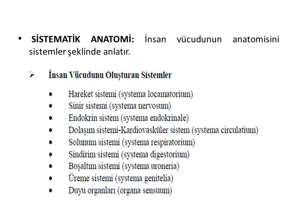 SİSTEMATİK ANATOMİ: İnsan vücudunun anatomisini sistemler şeklinde anlatır.