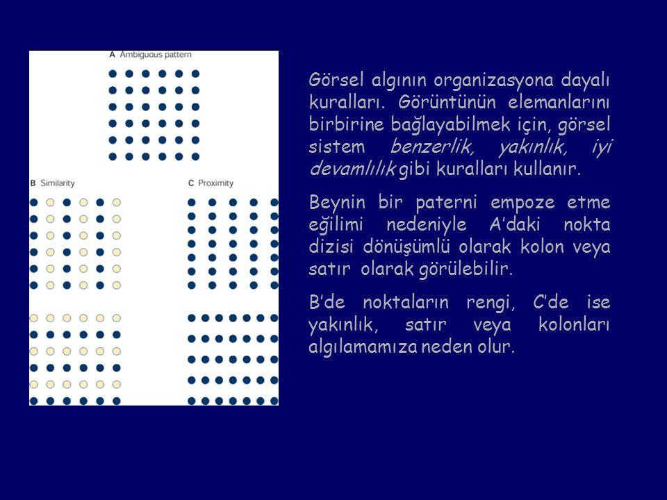 Görsel algının organizasyona dayalı kuralları. Görüntünün elemanlarını birbirine bağlayabilmek için, görsel sistem benzerlik, yakınlık, iyi devamlılık