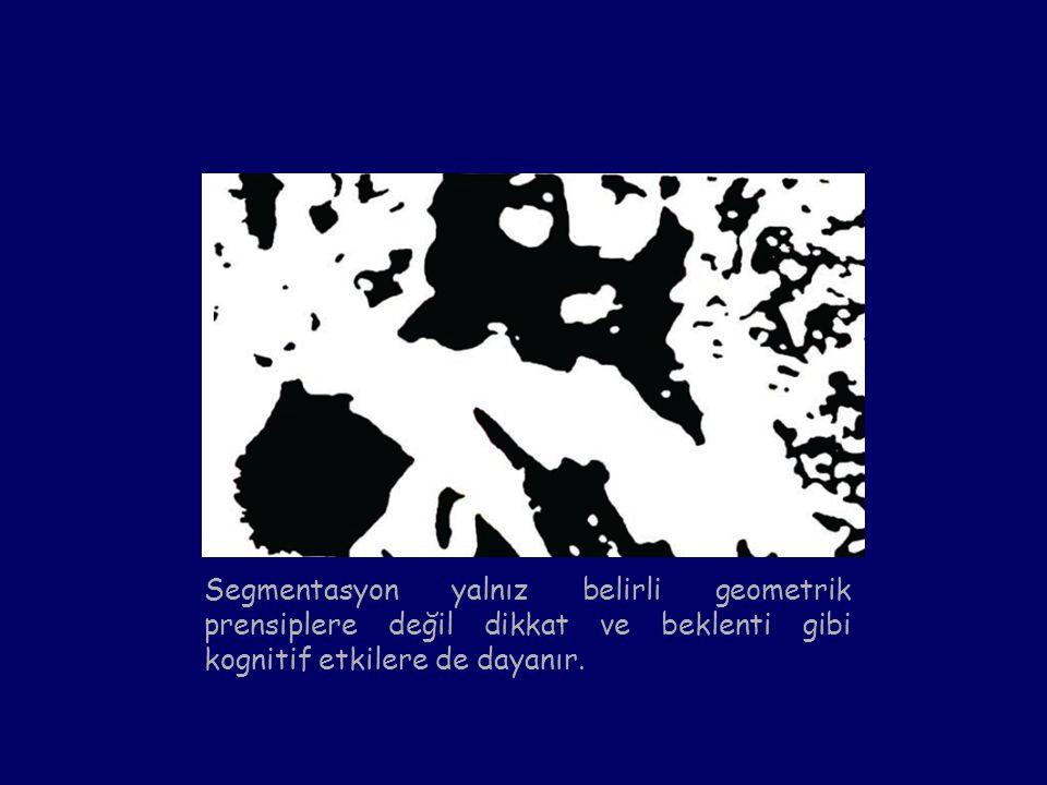 Segmentasyon yalnız belirli geometrik prensiplere değil dikkat ve beklenti gibi kognitif etkilere de dayanır.