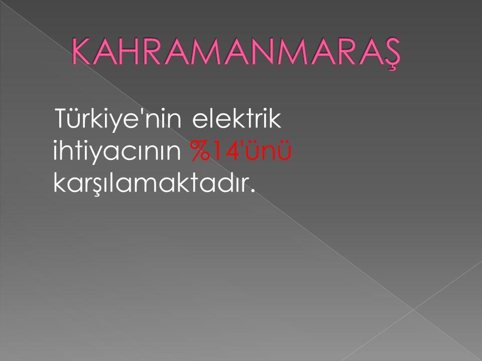 Türkiye'nin elektrik ihtiyacının %14'ünü karşılamaktadır.