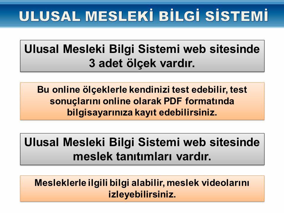 Ulusal Mesleki Bilgi Sistemi web sitesinde 3 adet ölçek vardır.