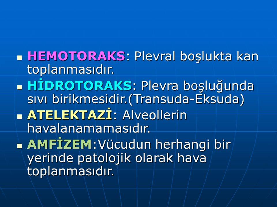 HEMOTORAKS: Plevral boşlukta kan toplanmasıdır.HEMOTORAKS: Plevral boşlukta kan toplanmasıdır.