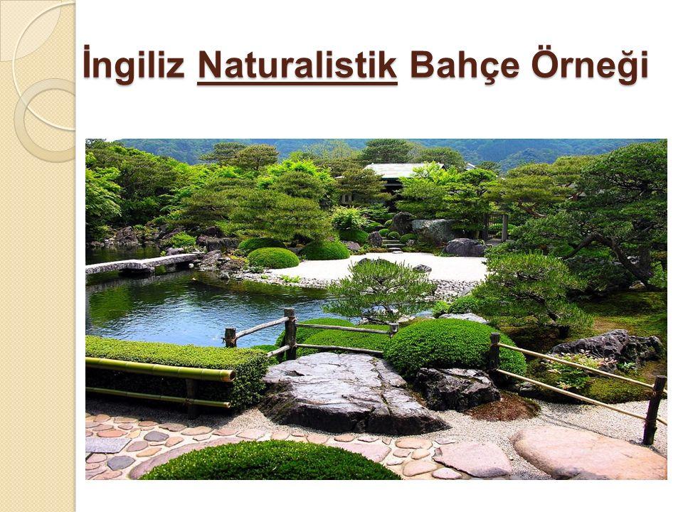 İngiliz Naturalistik Bahçe Örneği