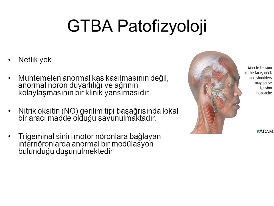 GTBA Patofizyoloji Netlik yok Muhtemelen anormal kas kasılmasının değil, anormal nöron duyarlılığı ve ağrının kolaylaşmasının bir klinik yansımasıdır.