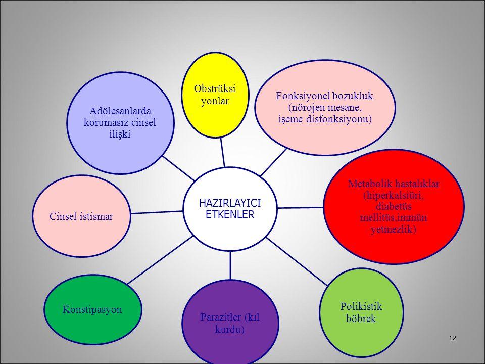 12 HAZIRLAYICI ETKENLER Obstrüksi yonlar Fonksiyonel bozukluk (nörojen mesane, işeme disfonksiyonu) Metabolik hastalıklar (hiperkalsiüri, diabetüs mel