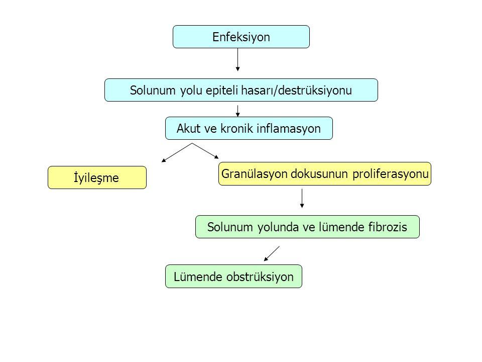 Histopatolojik tipler Proliferatif bronşiyolit: İntraluminal granülasyon dokusu ve fibrozis Konstrüktif bronşiyolit: Bronşiyoler inflamasyon, peribronşiyal fibrozis, bronşun tam skatrizasyonunu içeren spektrum (Postenfeksiyöz BO)
