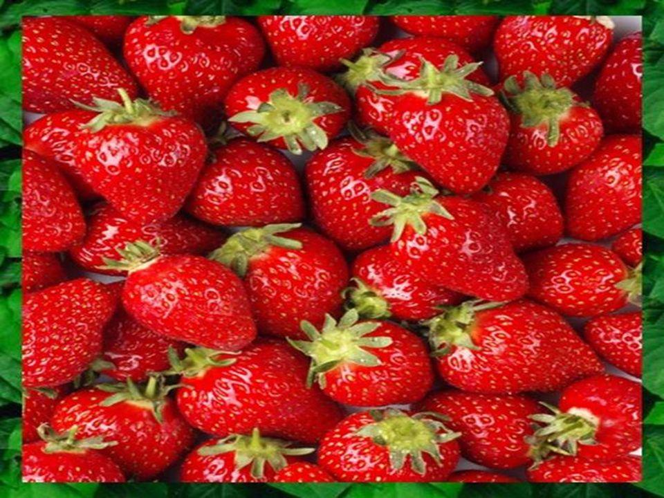 Verim: Elde edilen meyve pulpu verimi, meyve türü çeşidine göre değişmektedir ve genellikle 100 kg meyveden elde edilen pulpun litre olarak miktarı ile İfade edilmektedir.