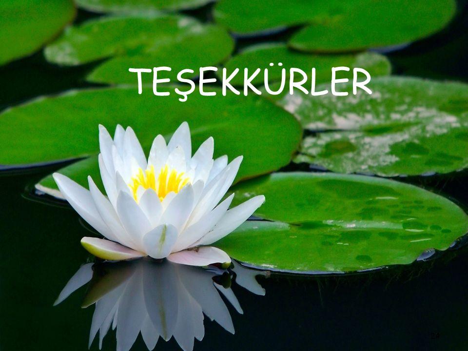 TEŞEKKÜRLER 24
