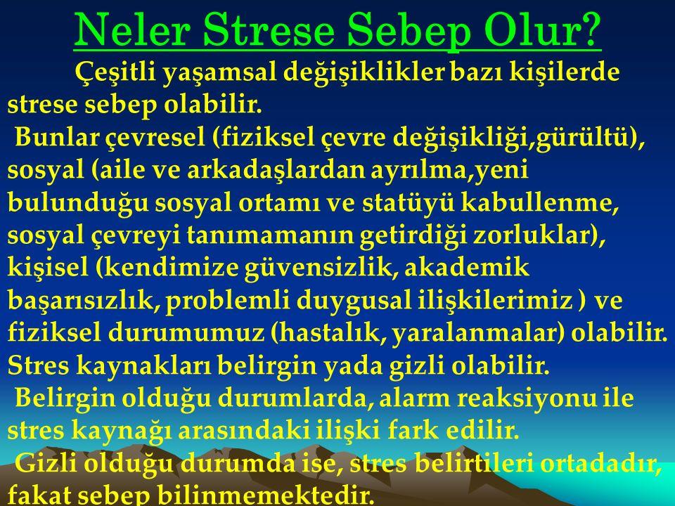 Neler Strese Sebep Olur.Çeşitli yaşamsal değişiklikler bazı kişilerde strese sebep olabilir.